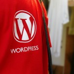 WordPress Shirt Logo