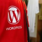 WordPress Shirt Logo